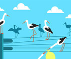 Storks on Electricity Wires Vector