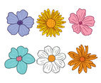Hand Drawn Gerbera Flower Vector
