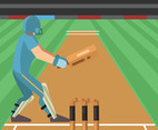 Cricket Illustration Vector