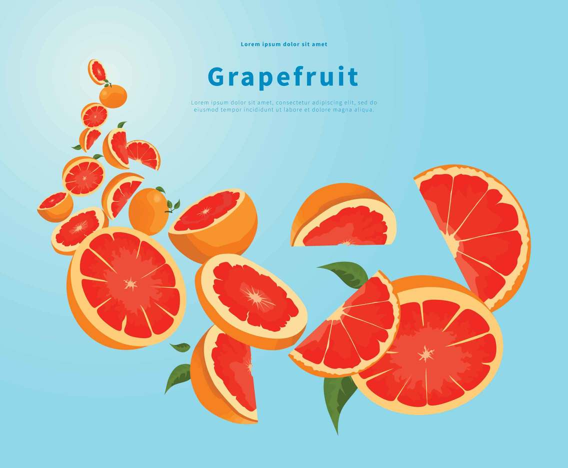 Flying Grapefruit Illustration