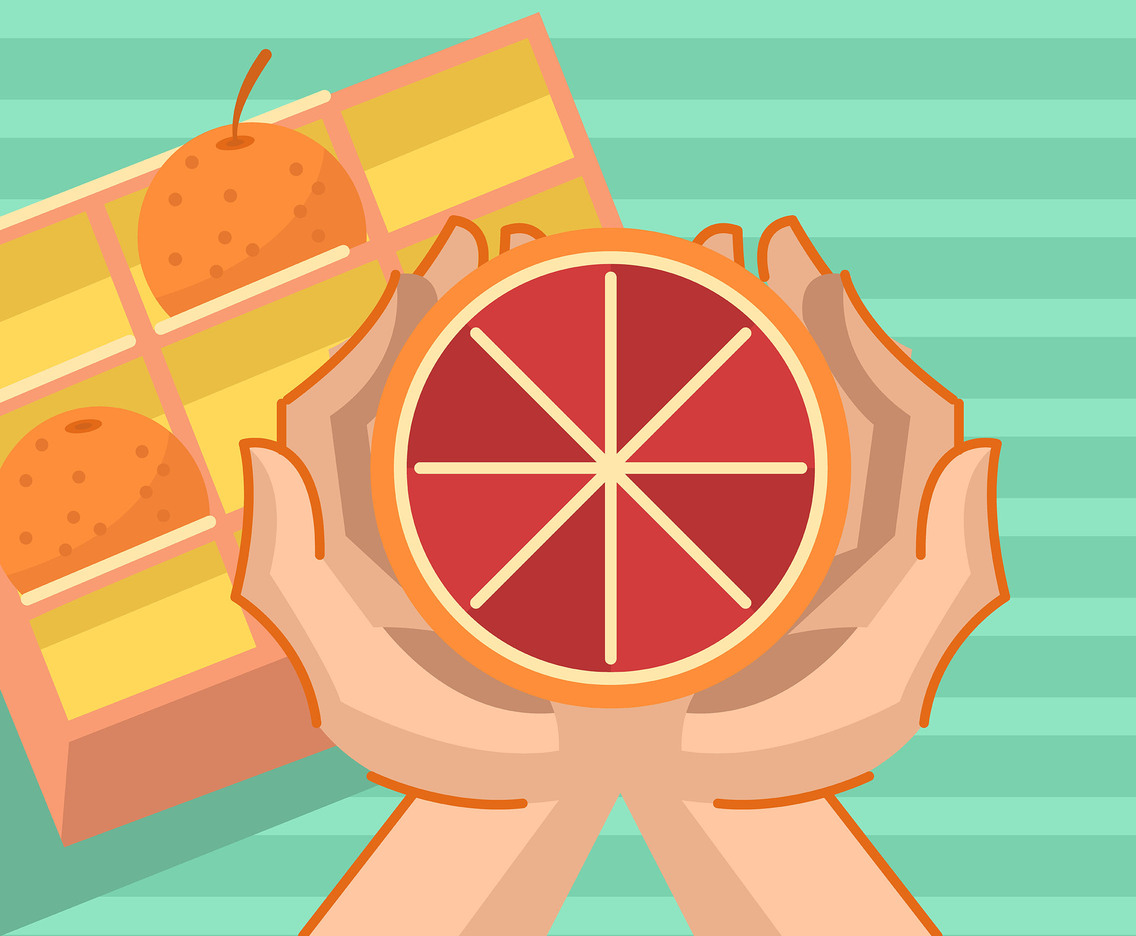 Pink Grapefruit Vector