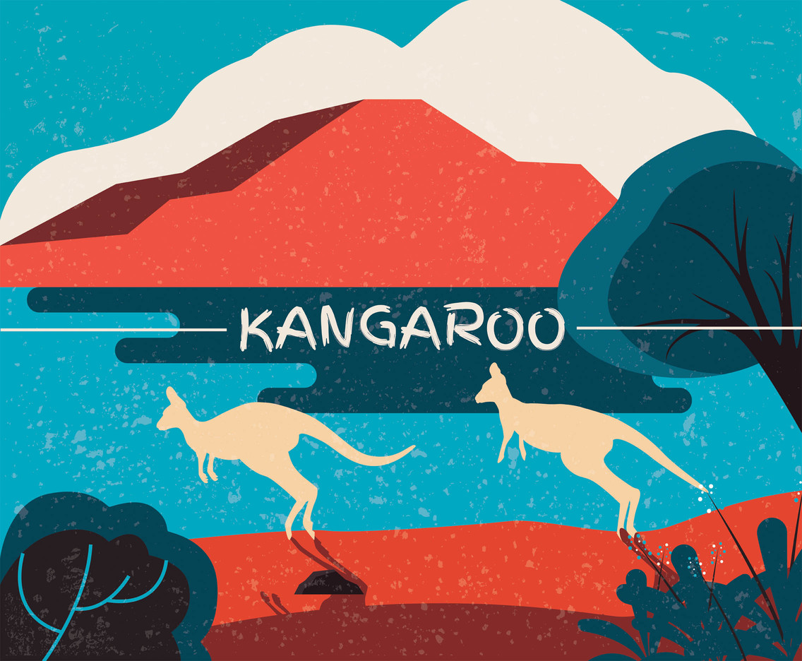 Kangaroo Vector Design