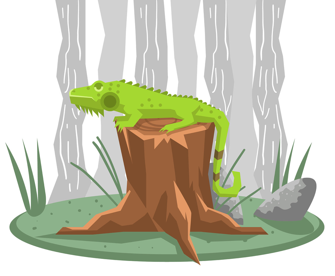 Iguana on Tree Stump Vector
