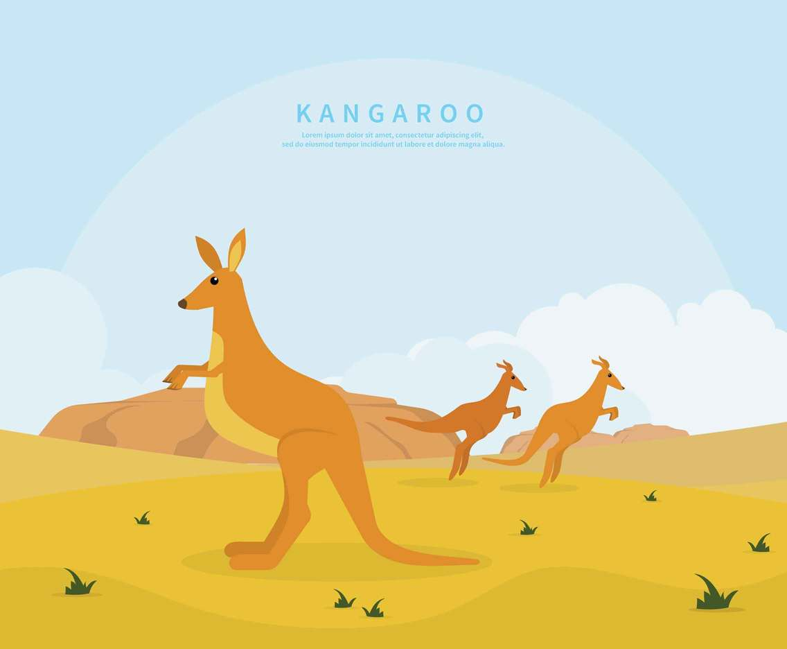 Kangaroo On Desert Illustration