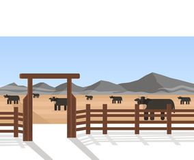Cattle at Ranch Vector