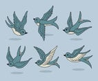 Hand Drawn Swallows Vector