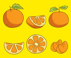 Tangerine On Yellow Vector