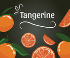 Tangerine Vector Design
