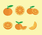 Tangerine Fruits Vector