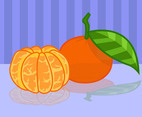 Peeled Tangerine Vector