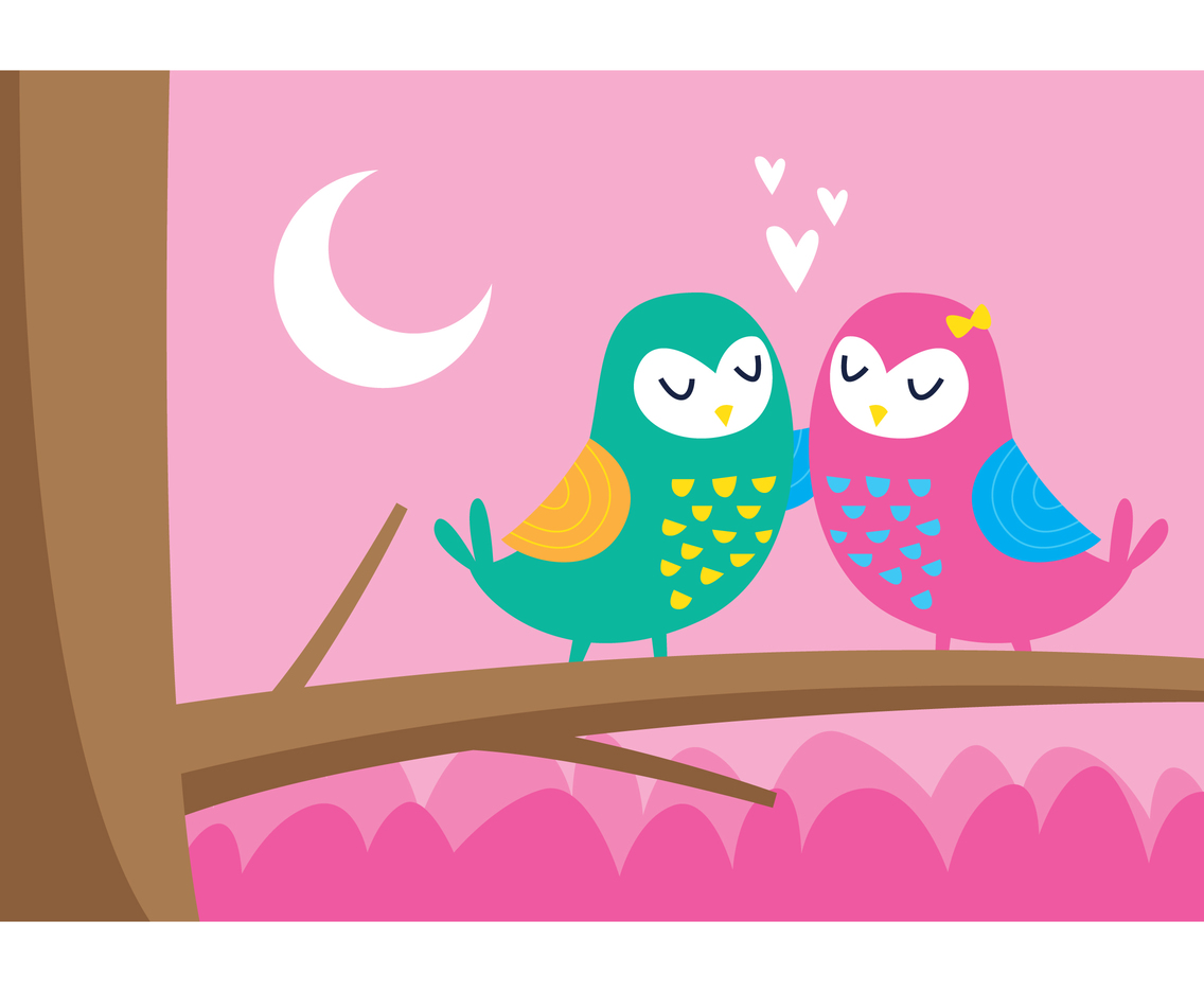Two Owls Fall In Love