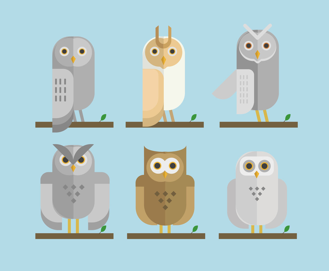 Minimalist Owls Illustration Vector
