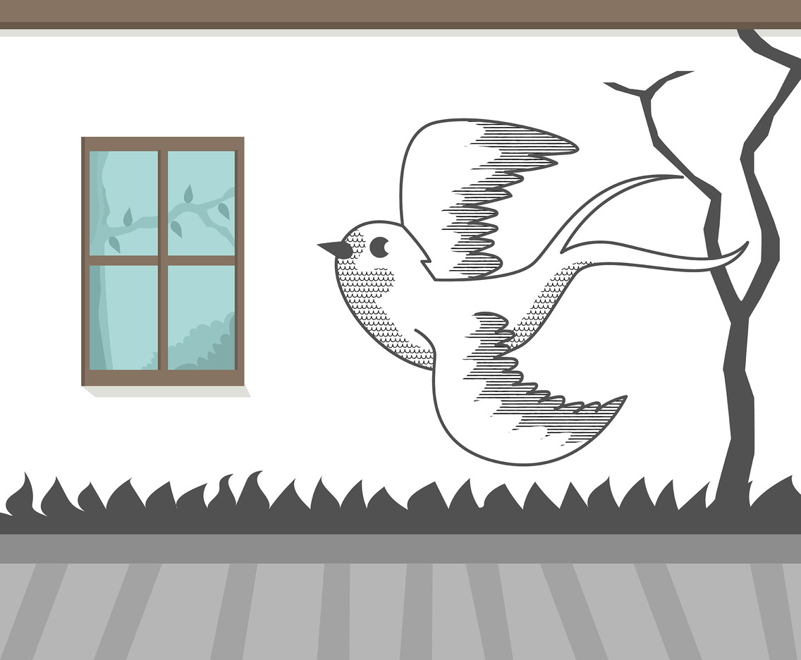 Swallow on Wall Vector