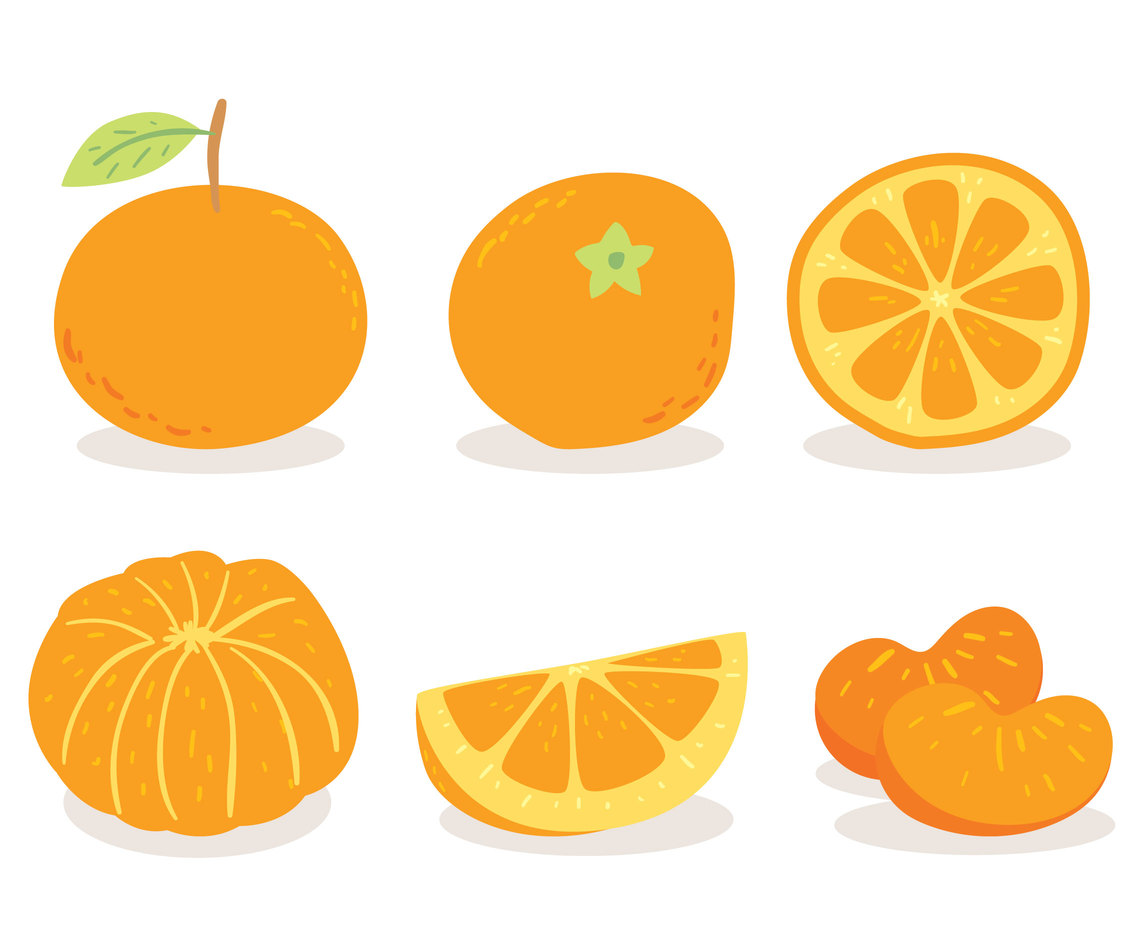 Tangerine On White Vector