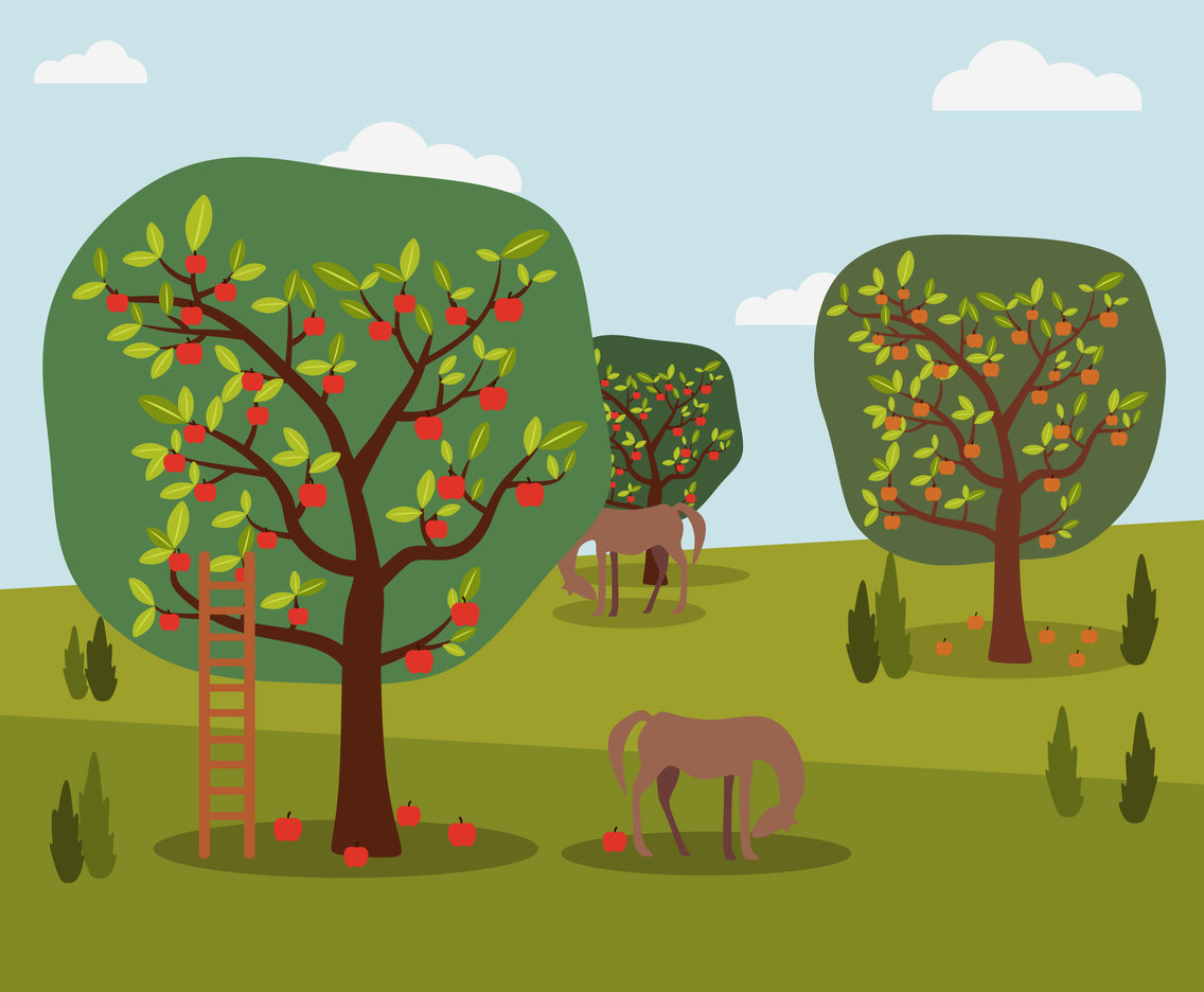 Apple Farm Vector