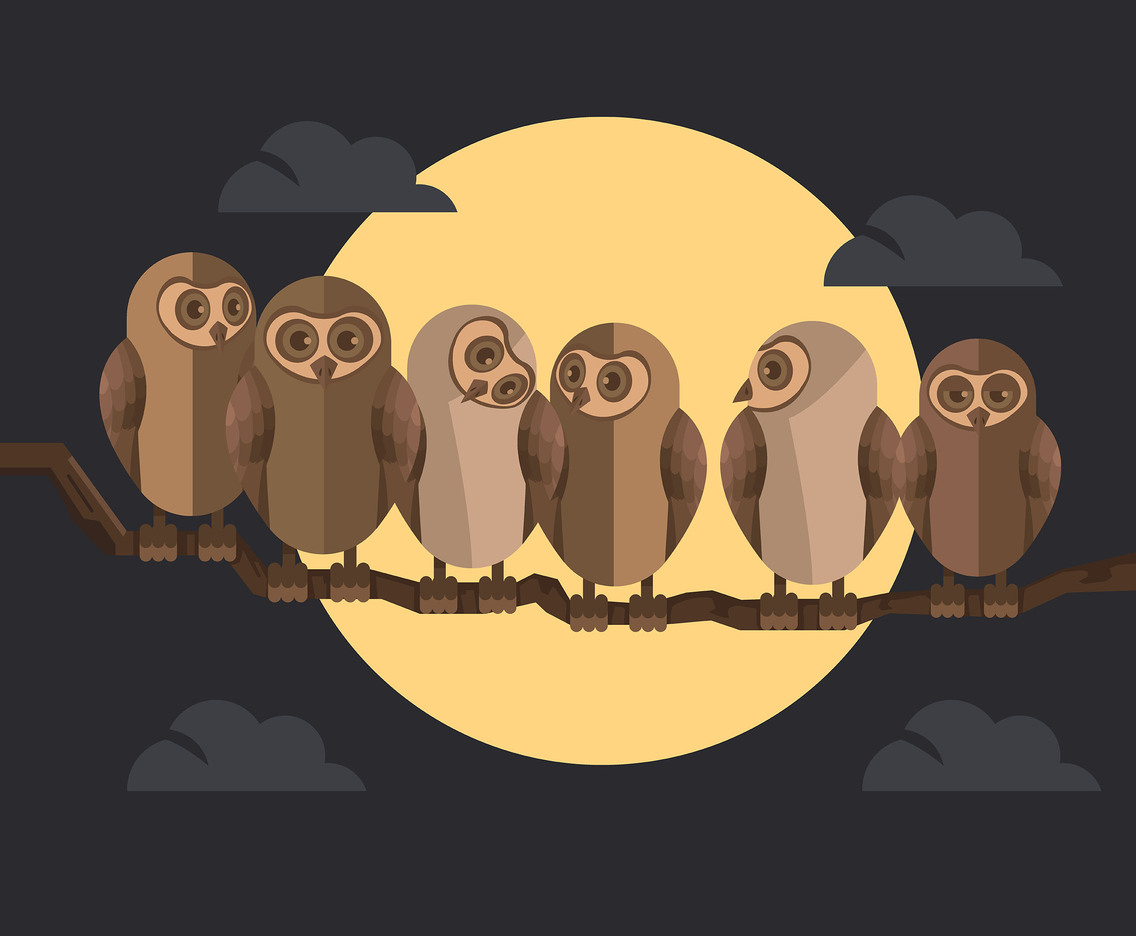 Owls and Full Moon Vector