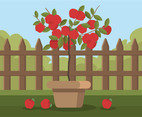 Apple Tree in Pot Vector