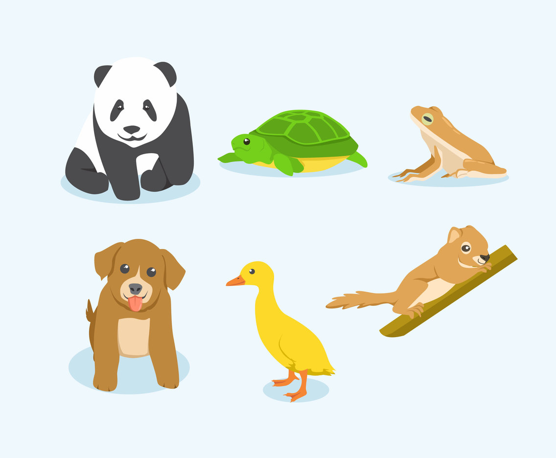 Young Animal Illustration Vector