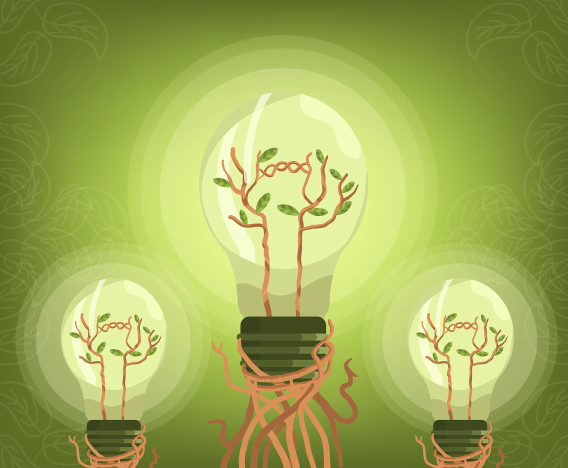 Green Energy Bulb Vector