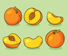Hand Drawn Peach Fruit Vector