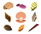 Various Clams Vector