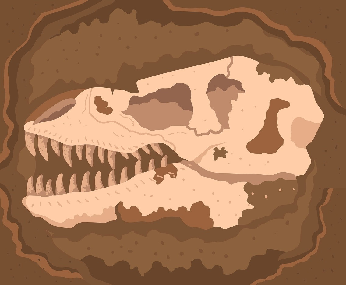 Fossil Vector