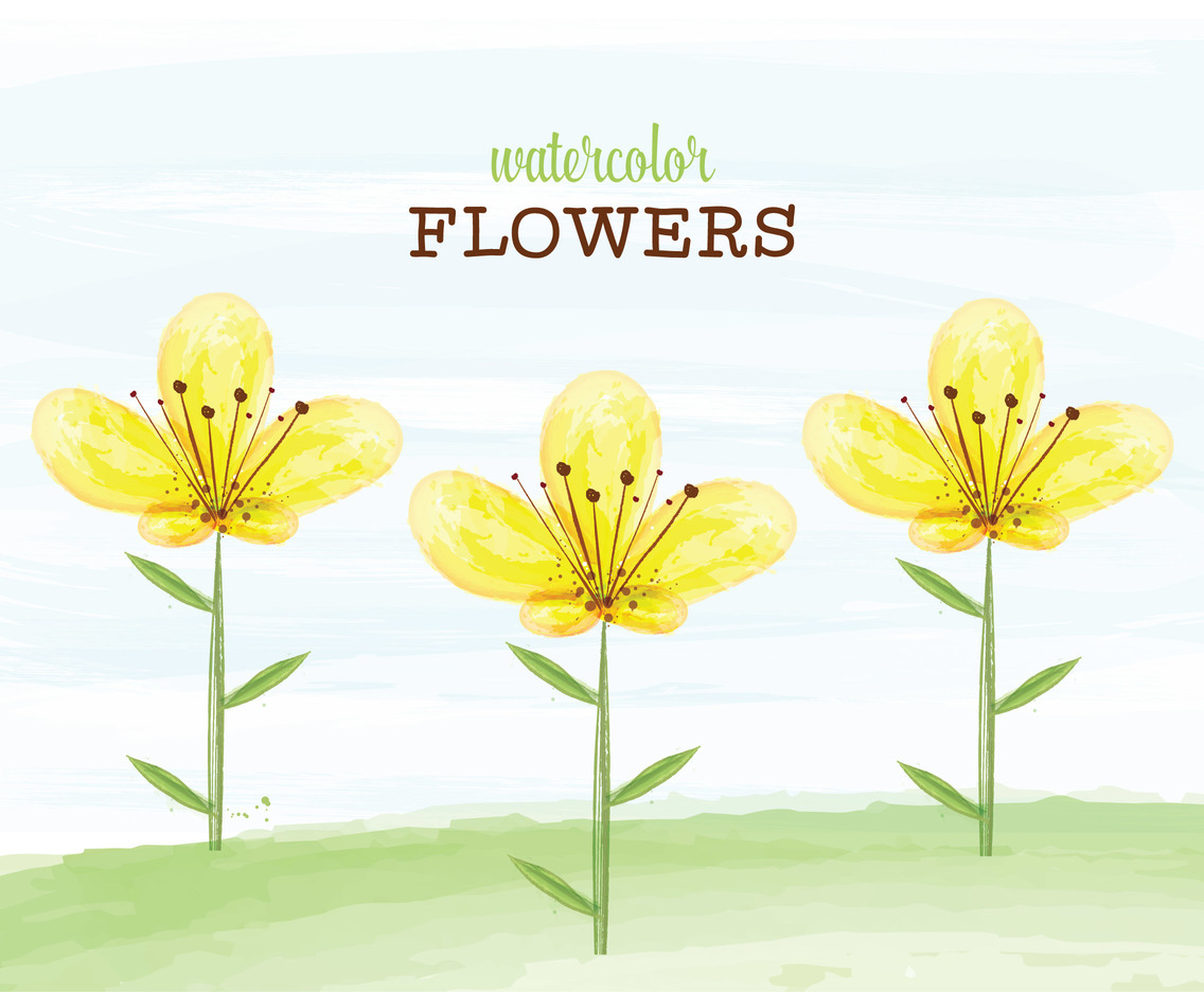 Yellow Watercolor Flowers Vector