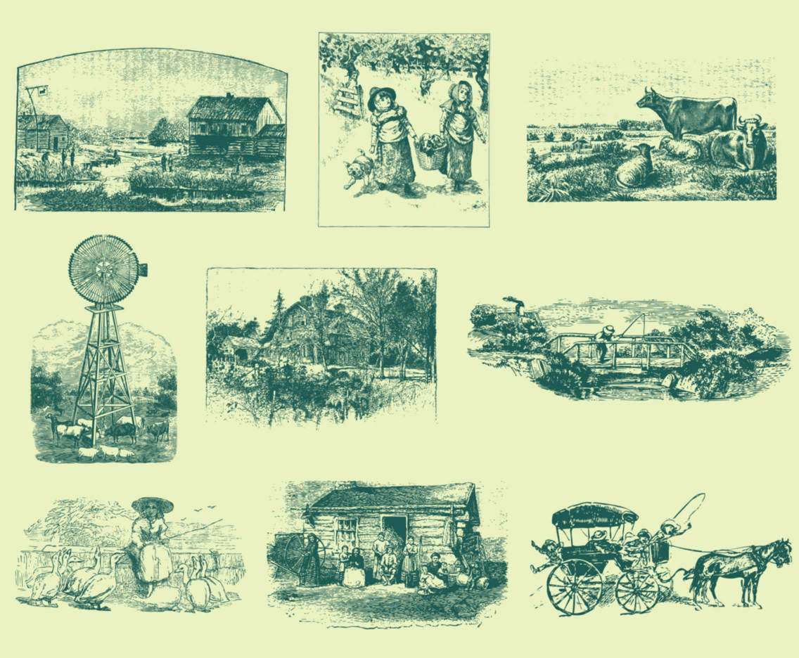Gray Vintage Farm and Orchard Illustrations