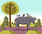 Buffalo and Birds Vector