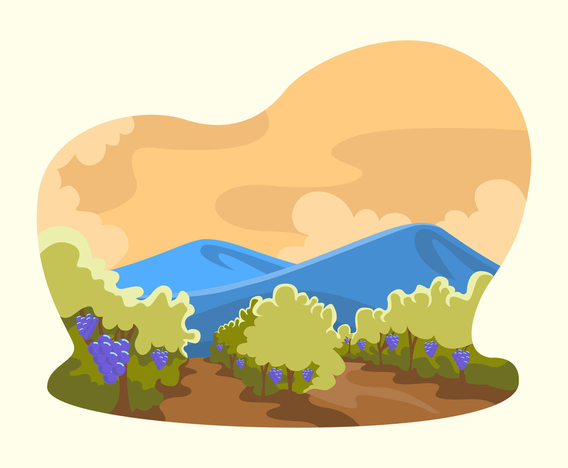 Vineyard Scenery View Vector