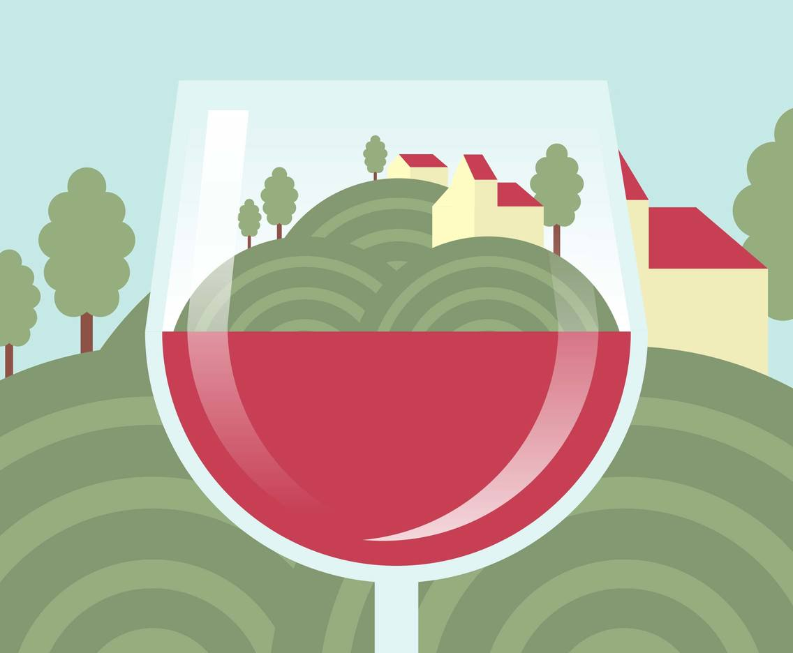 Vineyard Scenery First Person Illustration Vector