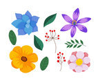 Colorful Flowers Clipart Vector