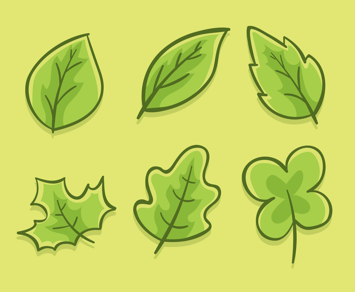 Green Leaves Collection Vector