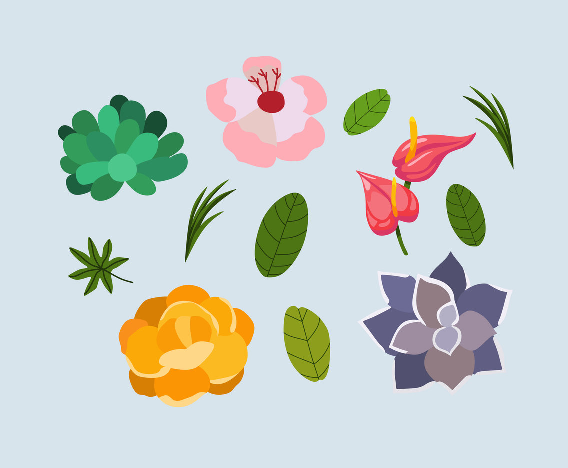 Various Flowers Clipart Vector