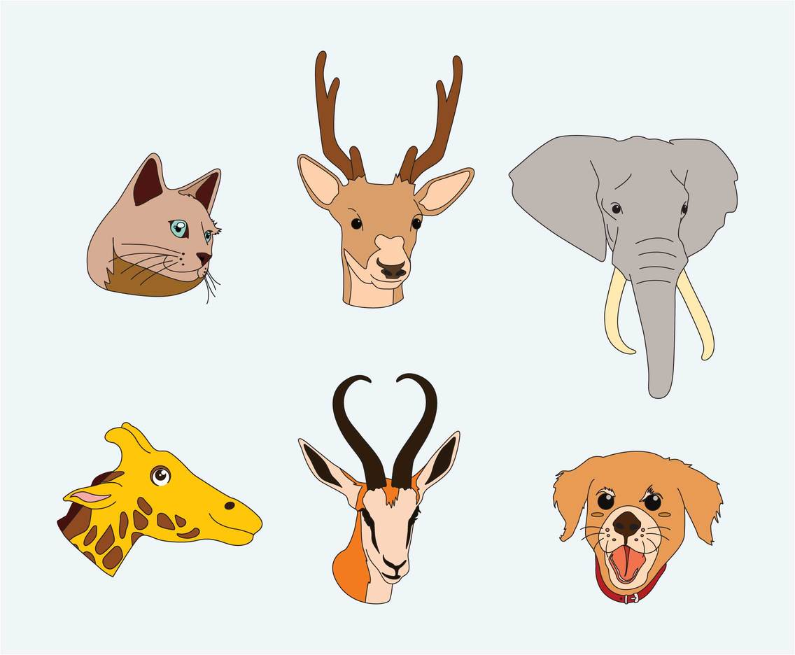 Animal Faces Illustration Vector