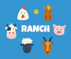 Ranch Animal