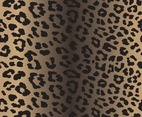 Vector Illustration of Leopard Print Seamless Pattern. Wild texture for Desig leopards Dots Nature Wallpaper