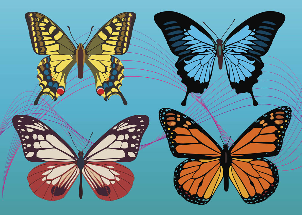 Colorful Butterfly Vectors