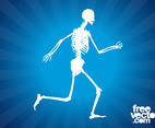 Running Skeleton Graphics