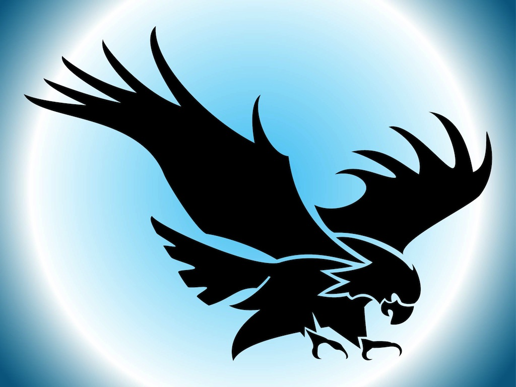 Flying Eagle Silhouette Vector Art &amp Graphics  Freevectorcom