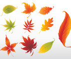 Swirling Leaves Graphics