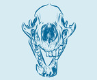 Animal Skull Graphics