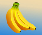 Bananas Vector