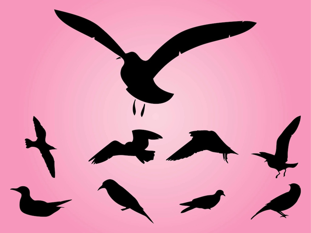 Bird Silhouettes Vectors