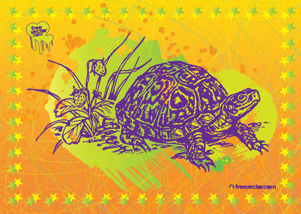 Turtle Shell Vector Turtle Vector Art
