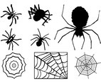 Spiders And Webs Graphics