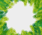 Tropical Leaves Vector Frame
