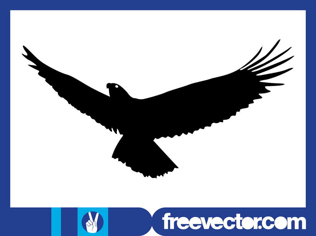 Flying Eagle Silhouette Graphics
