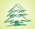 Fir Vector Drawing