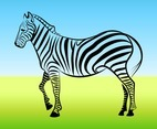 Zebra Outline